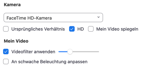 Screenshot Zoom Kamera Einstellungen